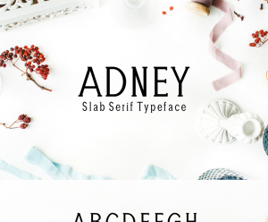 Adney Slab Serif Typeface 字体