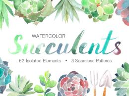 水彩多肉植物 Watercolor Succulent elements