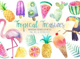 热带珍宝水彩素材合集 Tropical Treasures Watercolor Bundle