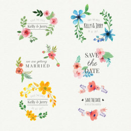 6个水彩婚礼标签 Floral watercolor wedding stickers set