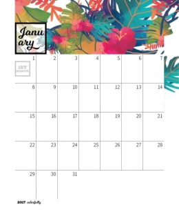 春意盎然、色彩斑斓日历年历模板 2017 Colorfully Desktop Calendar FREE InDesign Template