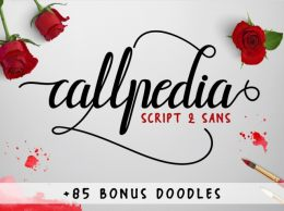 The Callpedia Font Duo手写英文字体
