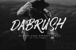 一款手写笔刷英文字体Dabrush Free Demo Typeface