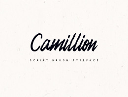 一款笔刷手写英文字体Camellion Brush Script Typeface
